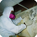 There-to-Repair can offer professional assessment and mold remediation, mold removal and mold prevention solutions at any property like the one in this image with complete follow-up restoration