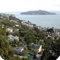 Sausalito Water Damage and Mold Removal & Testing Services